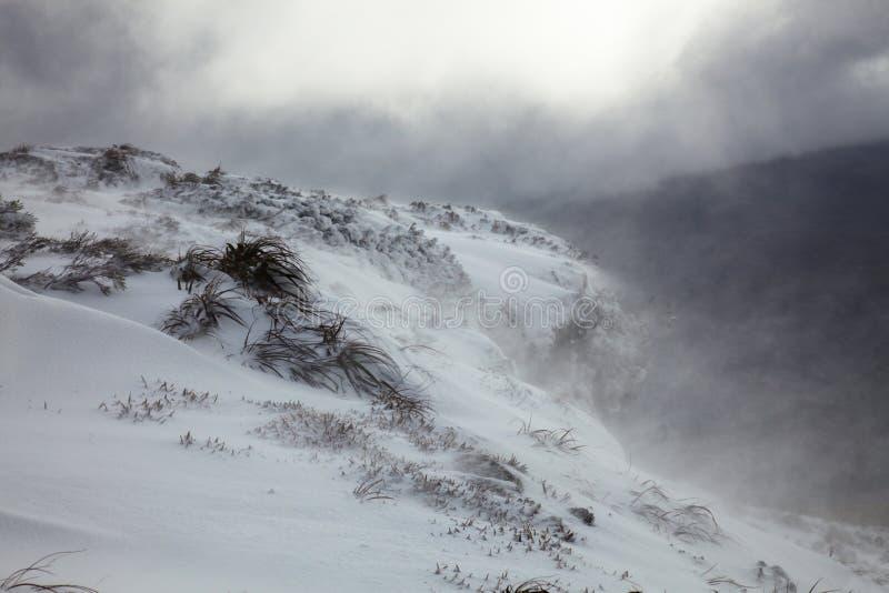 Tormenta en montañas tasmanas fotos de archivo libres de regalías