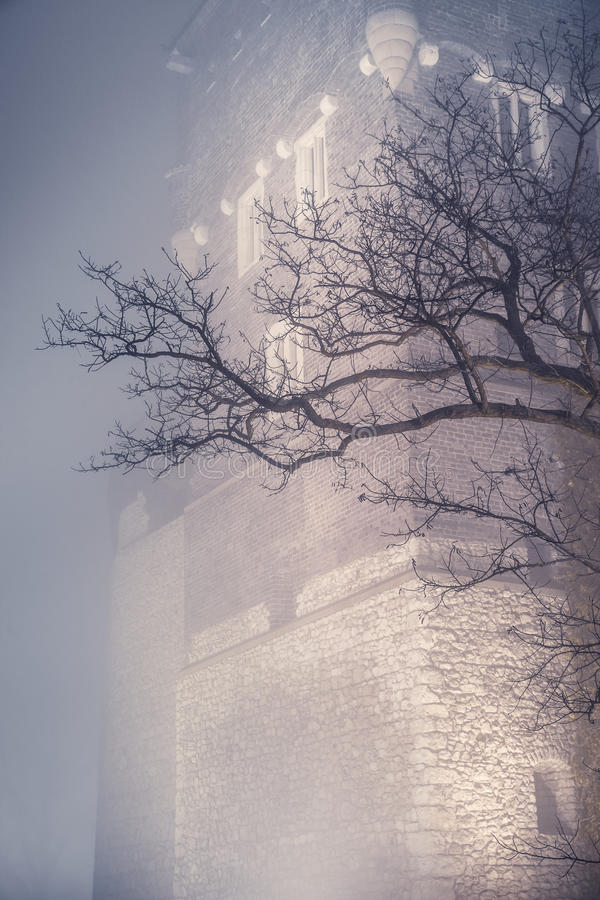 Torn av den Wawel slotten i Krakow Polen arkivbild