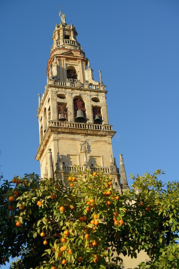Torn av moskén av Cordoba, Spanien fotografering för bildbyråer