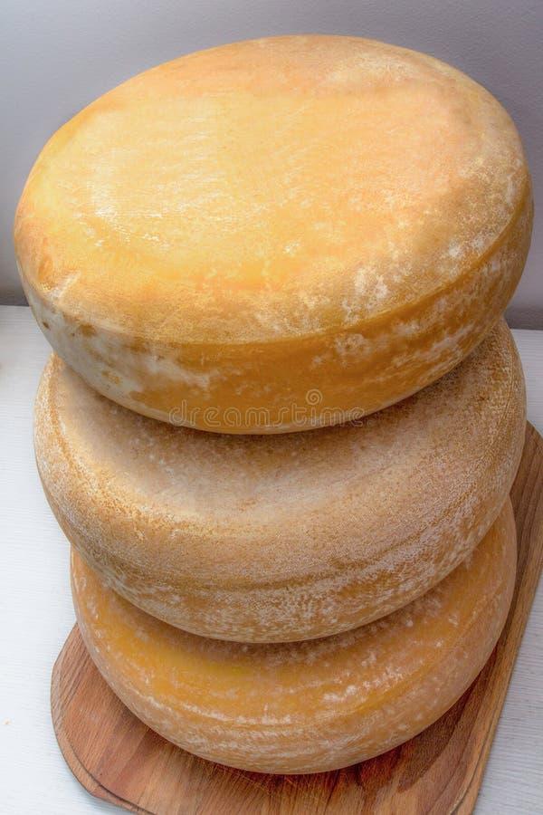 Torn av ost arkivbilder
