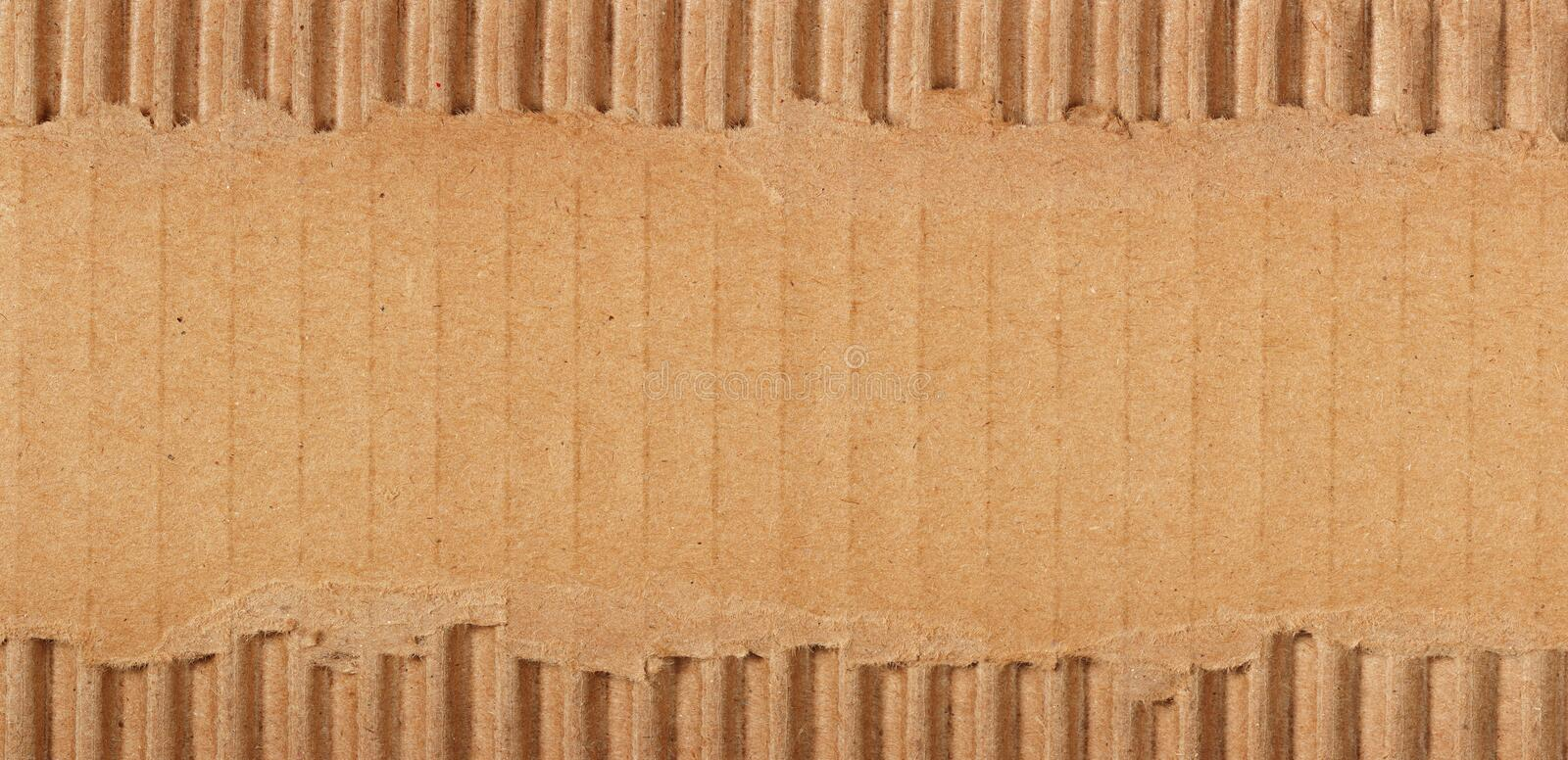 Download Torn cardboard stock photo. Image of background, blank - 10370538