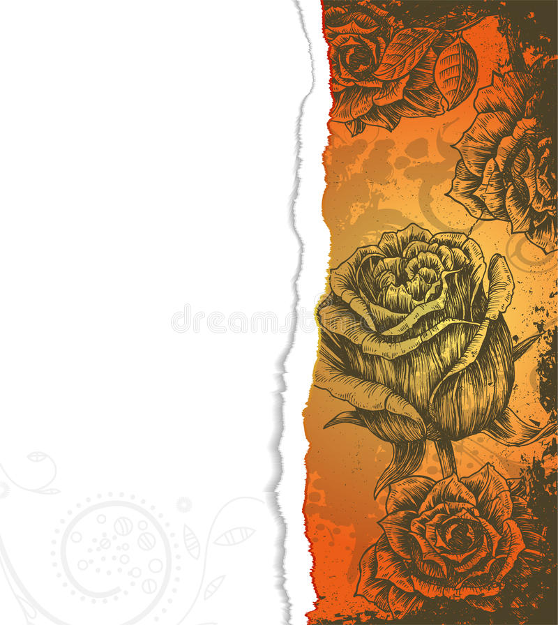 Download Torn Cardboard With Roses Royalty Free Stock Photos - Image: 24833968