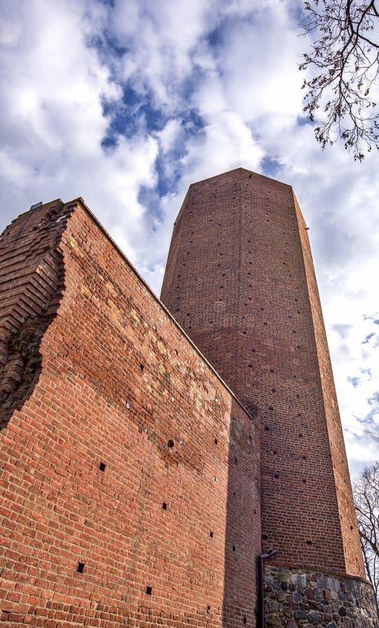 Torn för mus` s i Kruszwica royaltyfri fotografi
