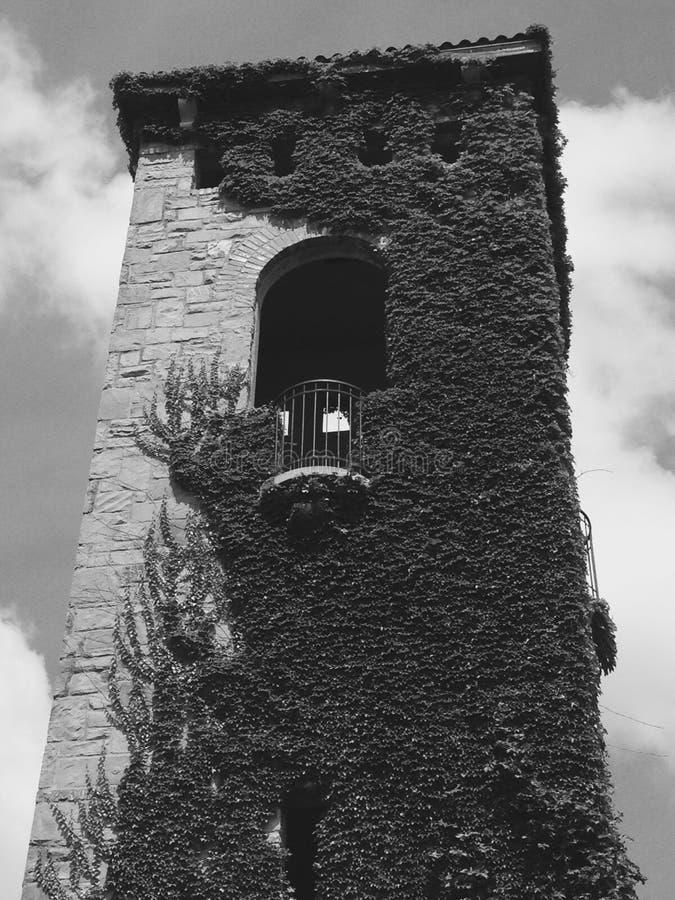 Torn för Repunzel ` s arkivfoton