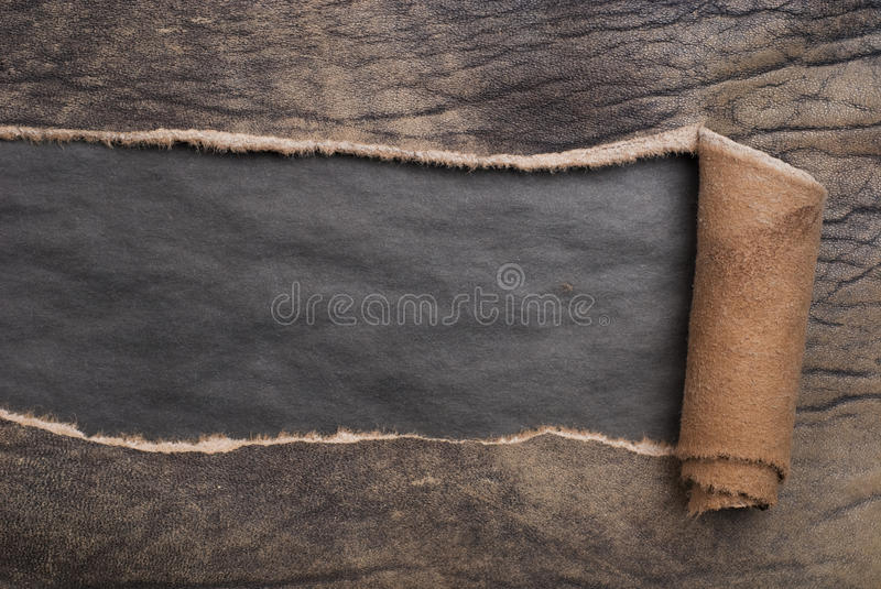 Torn leather stock images