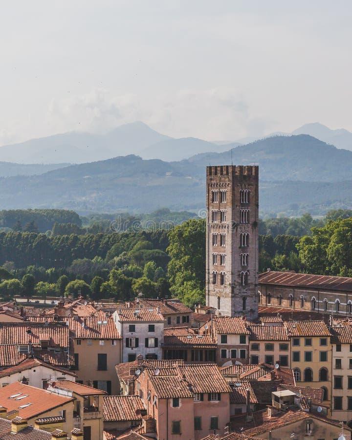 Torn och basilika av San Frediano ?ver hus av Lucca, Tuscany, Italien som besk?das fr?n det Guinigi tornet arkivfoton