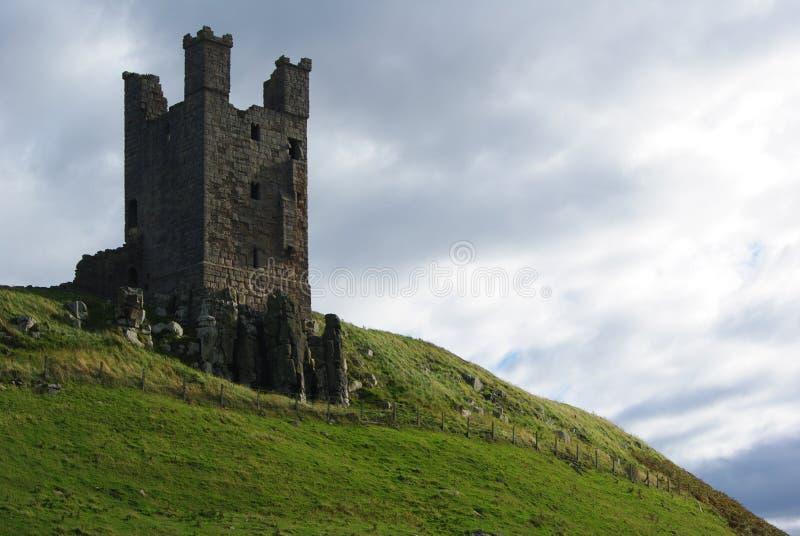 Torn på en kulle arkivfoto
