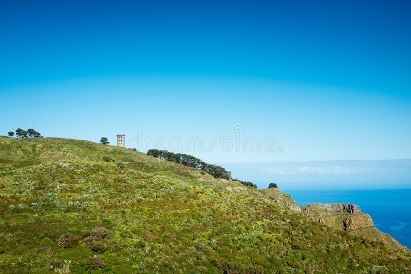 Torn på kullen arkivbild