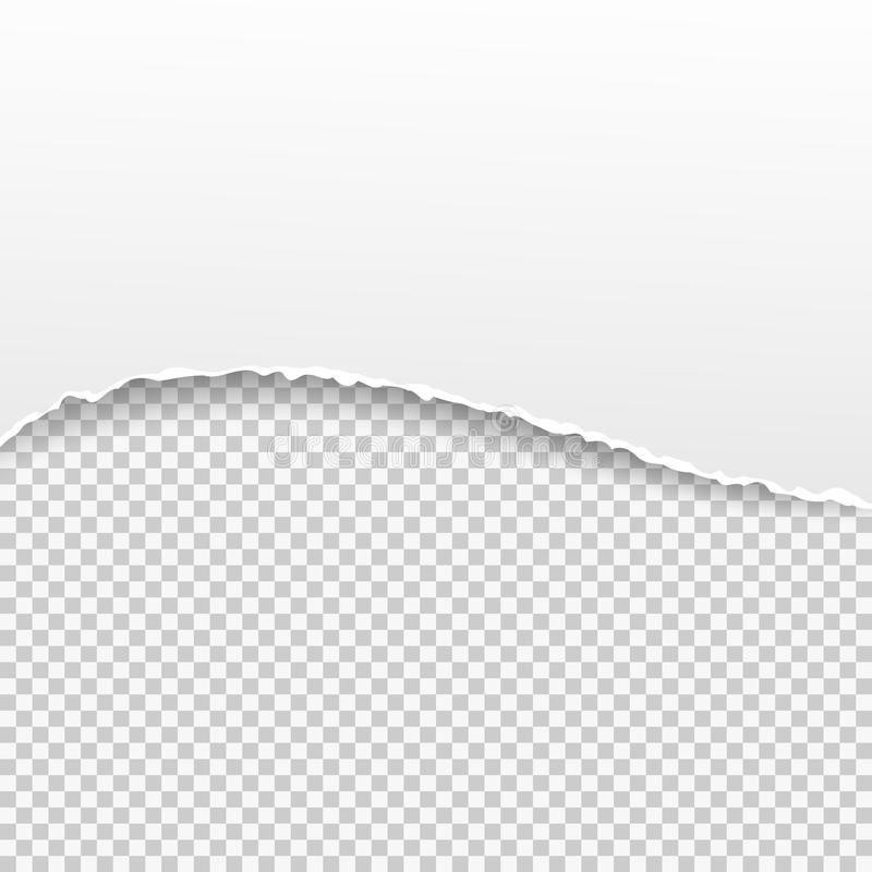 Torn Paper Banner On The Transparent Background. Vector