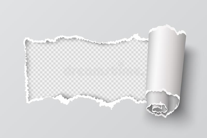 Torn paper edge. Realistic transparent header hole, page ripped grunge texture, destroyed cardboard element. Vector rip stock illustration