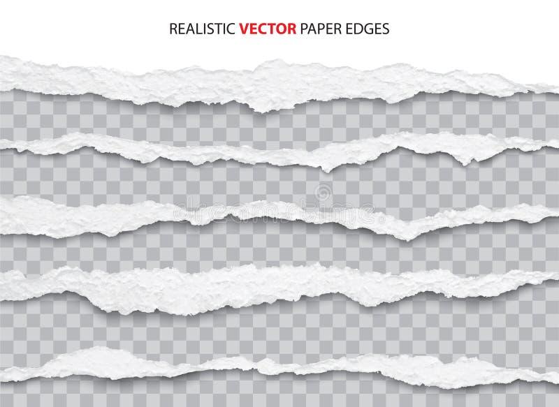 Torn paper edges. Realistic torn paper edges vector vector illustration