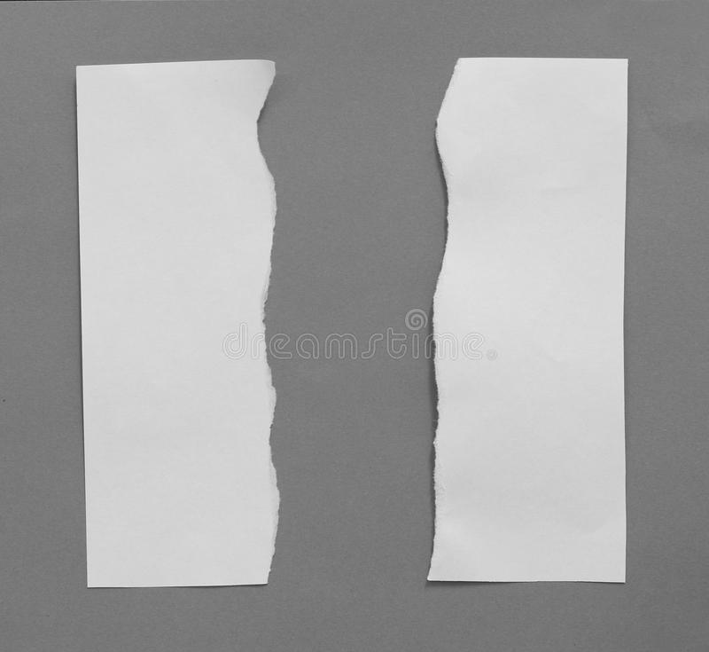 Torn rip paper. Pieces of torn rip paper texture background, with space for text stock photo