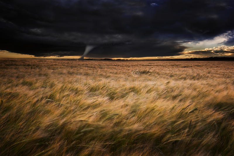Tornade de tornade au-dessus des zones dans l'orage d'été images stock