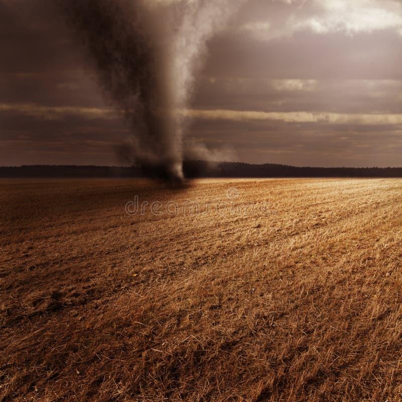 Tornado auf dem Gebiet stockfoto