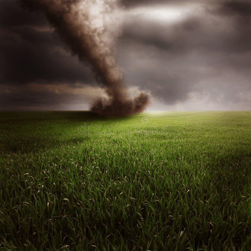 Tornado op groen gebied stock afbeeldingen