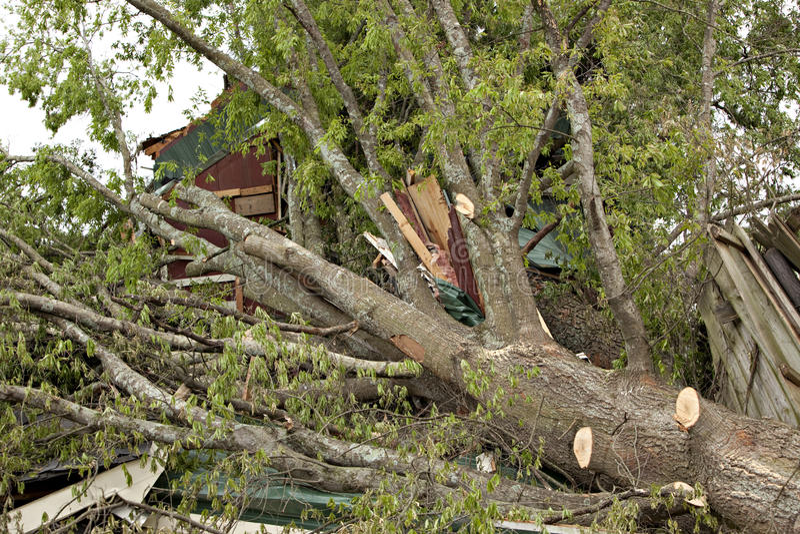 Tornado schädigende Bäume und Gebäude lizenzfreie stockfotos