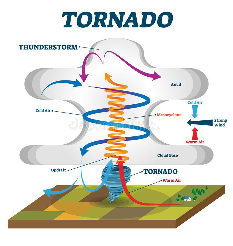 Tornado vector illustration. Labeled educational wind vortex explanation. Weather hurricane scheme with anvil, mesocyclone and cloud base. Updraft air motion stock illustration