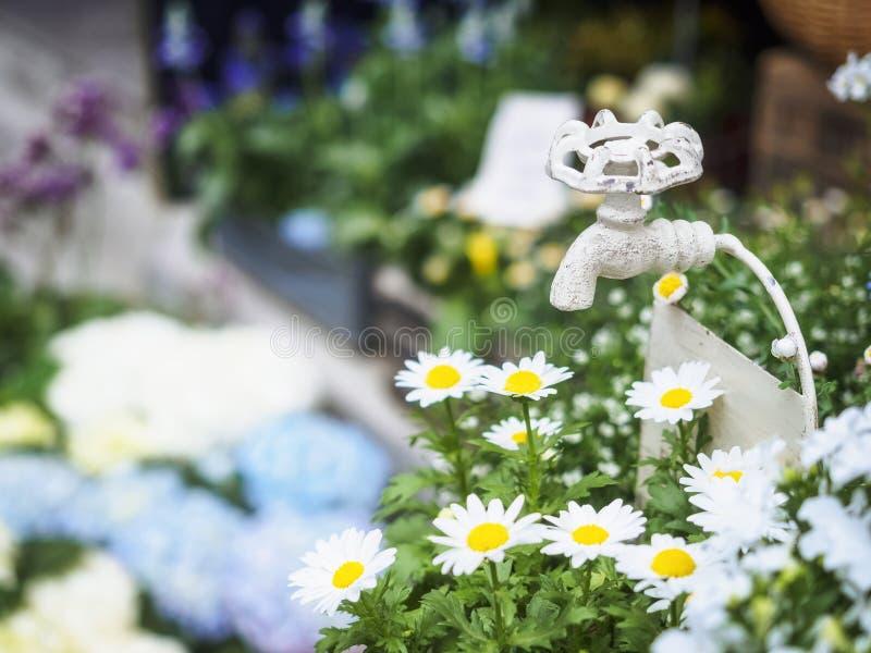 Torneira de água na decoração exterior do verão das flores brancas de jardim fotografia de stock