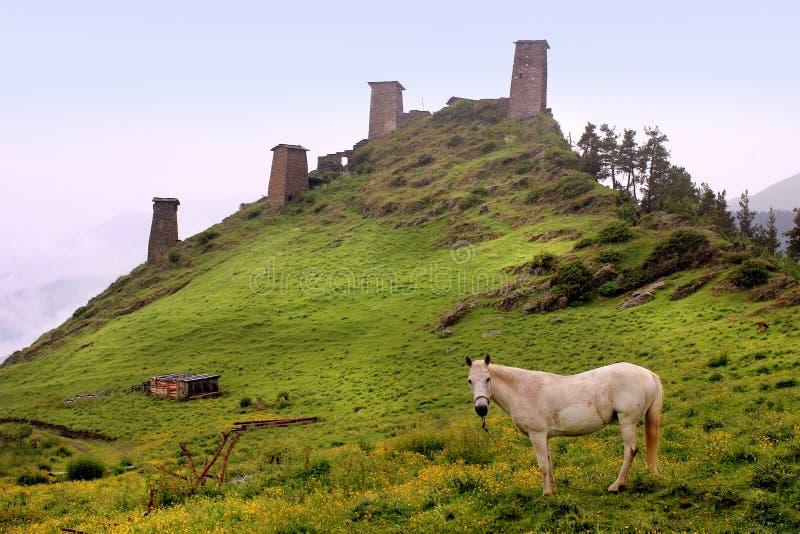 Tornen i den Omalo byn Tusheti region (Georgia) arkivfoton