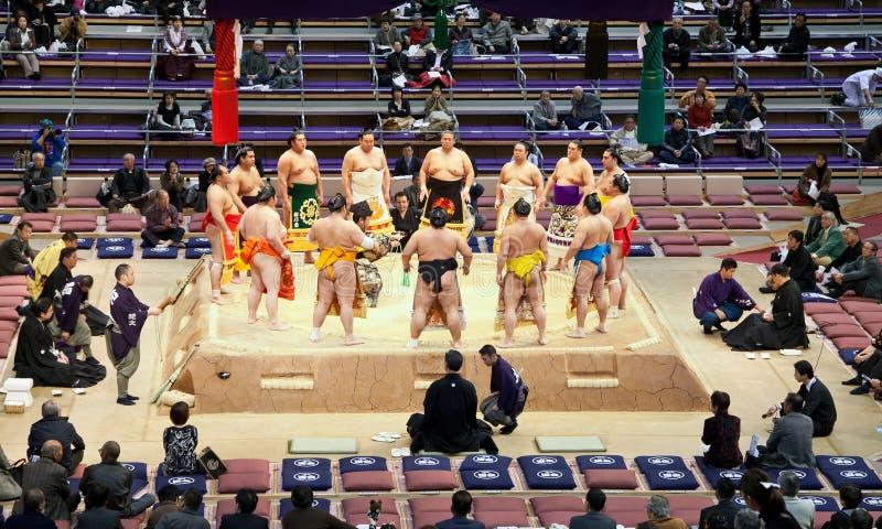 Torneo di Sumo fotografie stock