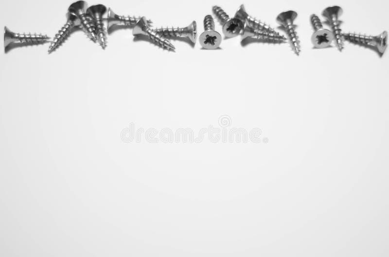 Tornillos de madera en un fondo blanco fotografía de archivo