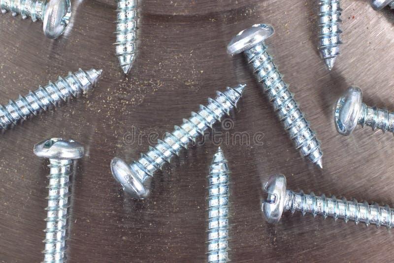 Tornillos de metal de hoja fotografía de archivo libre de regalías