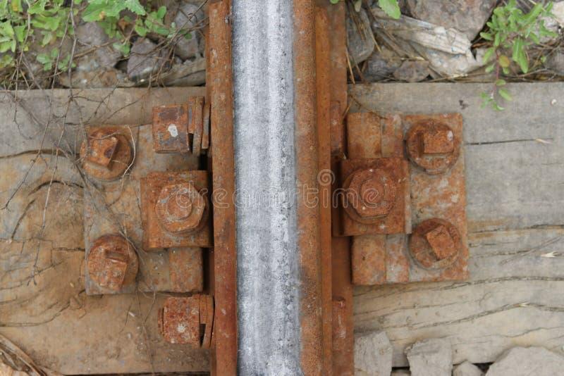Tornillos oxidados viejos en la madera seca imagen de archivo libre de regalías