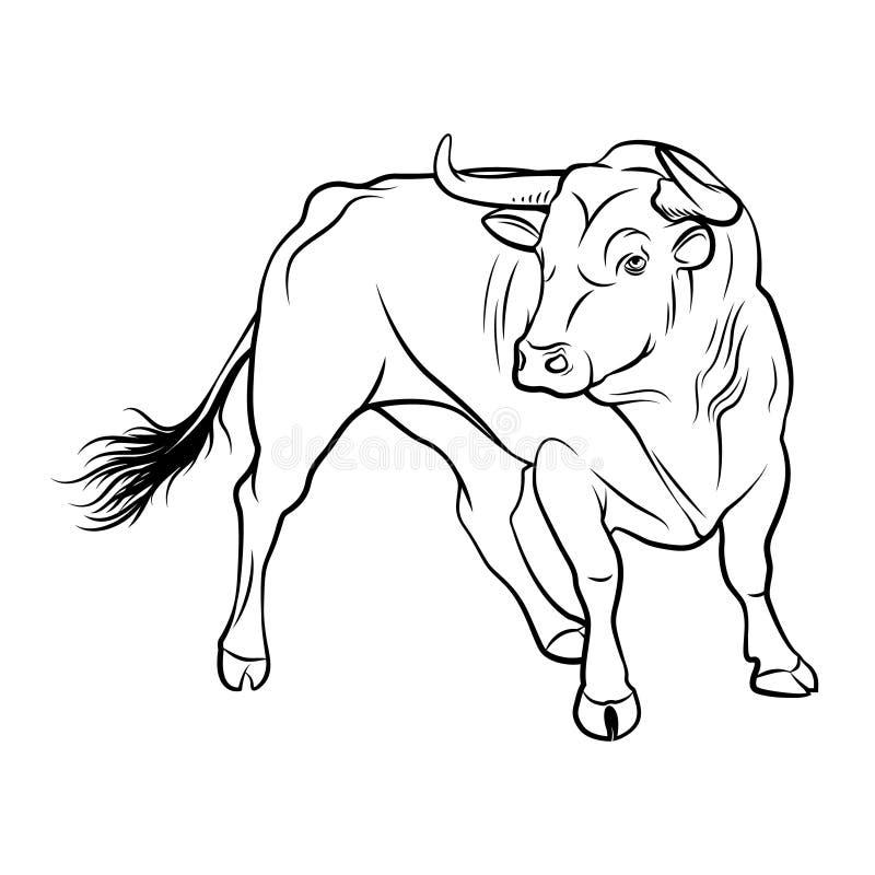 Toro di vettore Un'illustrazione del profilo su un fondo bianco illustrazione vettoriale