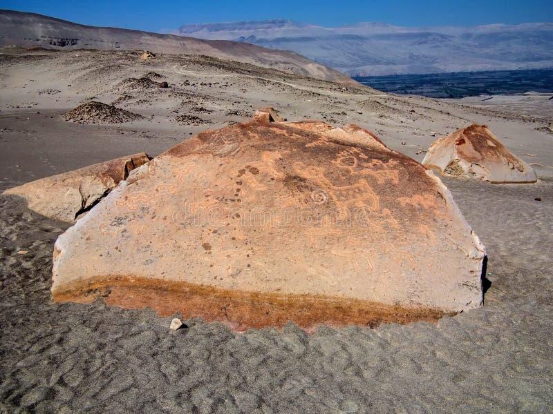 Toro muerto - Peru stock fotografie