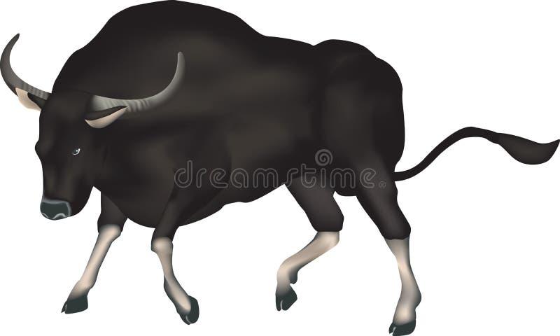 Download Toro salvaje stock de ilustración. Ilustración de mamífero - 7285090