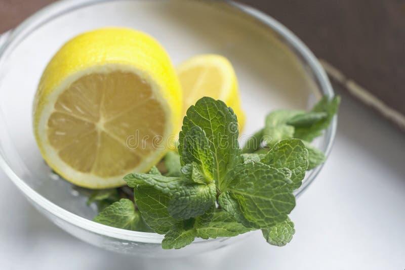 Toronjil y limón verdes herbarios naturales frescos Bebida sana médica de la relajación orgánica del aromatherapy fotos de archivo