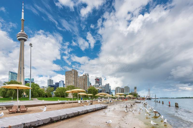 Toronto beach at summer day - Toronto, Ontario, Canada. Spectacular Toronto City skyline at sunset - Toronto, Ontario, Canada stock photos