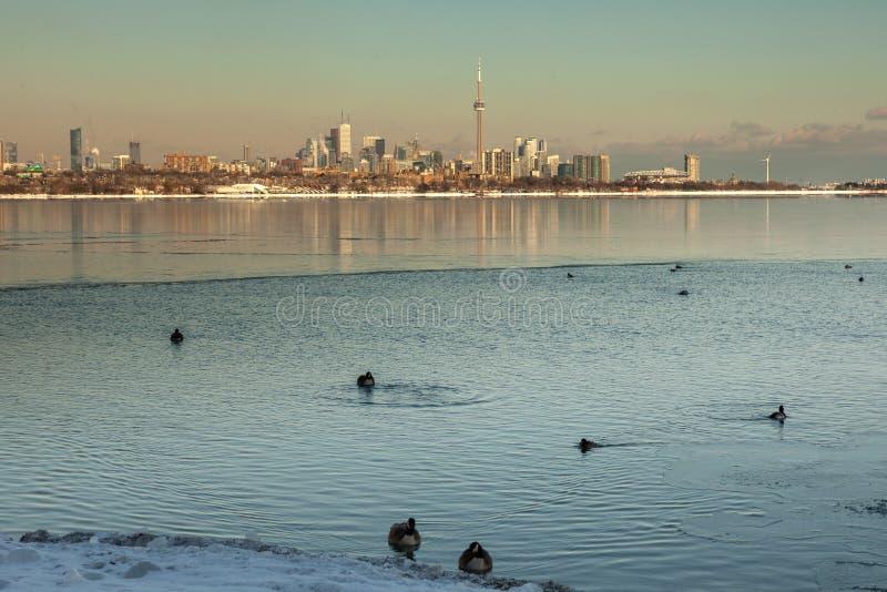 Toronto, CANADÁ - 1 de febrero de 2019: Paisaje canadiense panorámico del invierno cerca de Toronto, lago congelado hermoso ontar imagenes de archivo