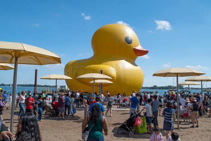 Giant Rubber Duck In Pittsburgh Editorial Photo Image Of Water Inflatable 35415386