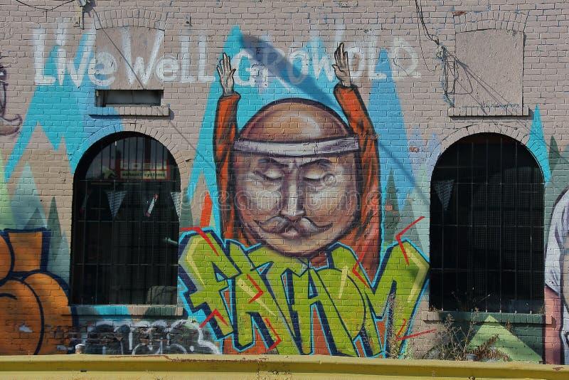 Toronto för väggmålning spadaina 2016 royaltyfria foton