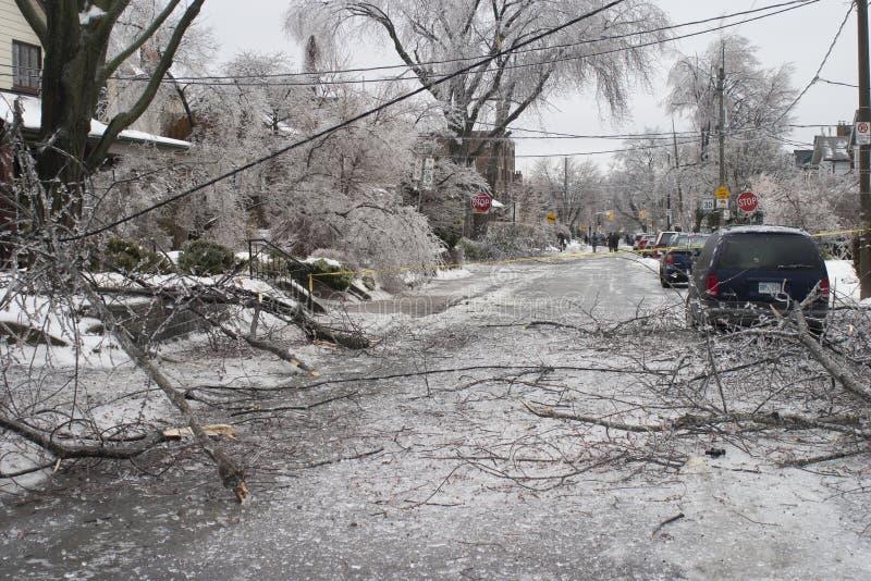Toronto isstorm fotografering för bildbyråer