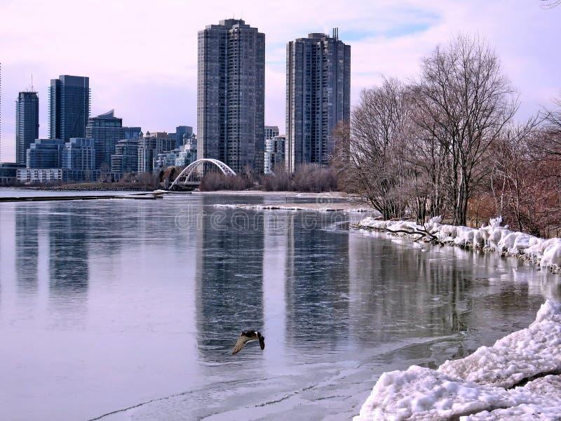 Toronto Jeziorny widok zimy Humber zatoka 2018 fotografia stock