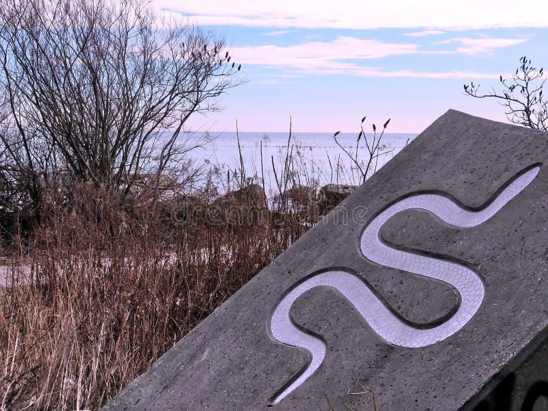 Toronto Jeziorny wizerunek wąż 2018 zdjęcie stock