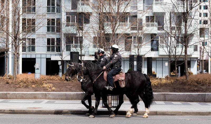 Download Toronto Mounted Police On Horses In Toronto, Canada. Editorial Image - Image of protest, city: 90670200
