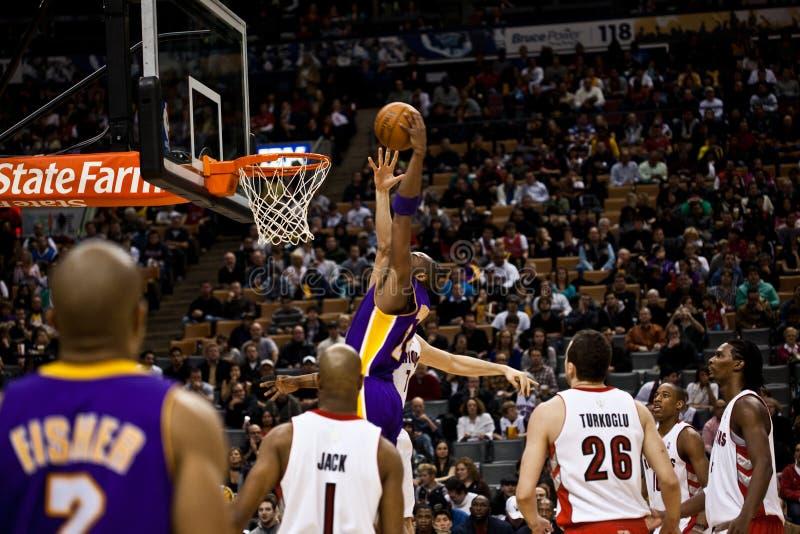 Toronto Rapters contra Los Angeles Lakers imagens de stock