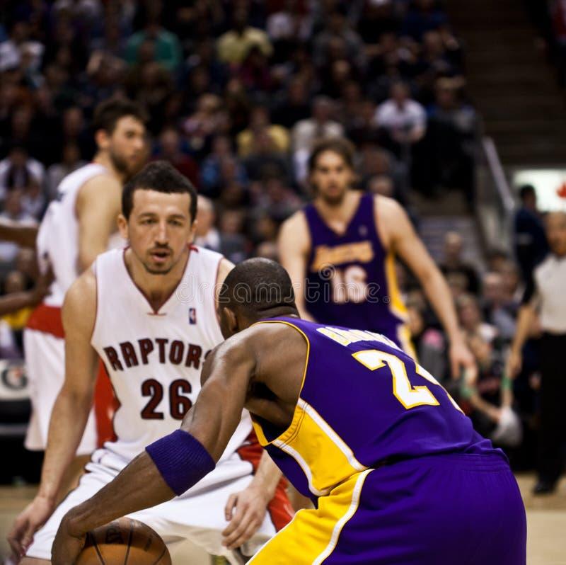 Toronto Rapters contre Los Angeles Lakers photographie stock libre de droits