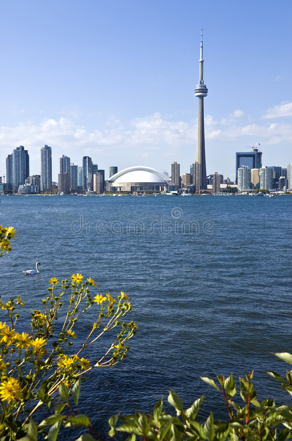 The Toronto Skyline royalty free stock photography