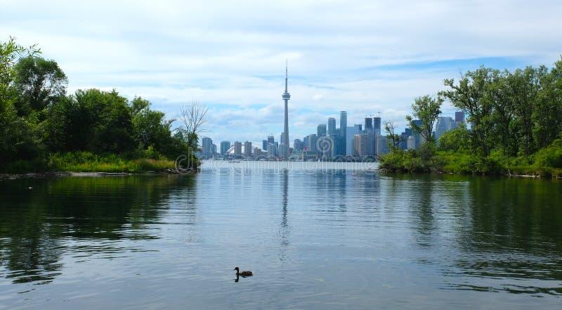 Toronto skyline in Ontario, Canada. View of Toronto skyline in Ontario, Canada stock images