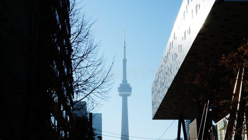 Toronto-Skyline vom Ontario See stockfoto