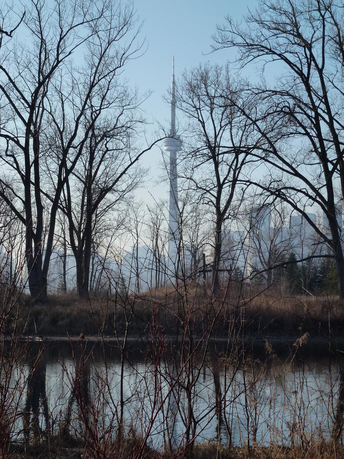 Toronto-Skyline vom Ontario See lizenzfreies stockbild