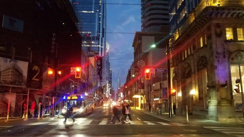 Toronto Street di notte fotografia stock libera da diritti