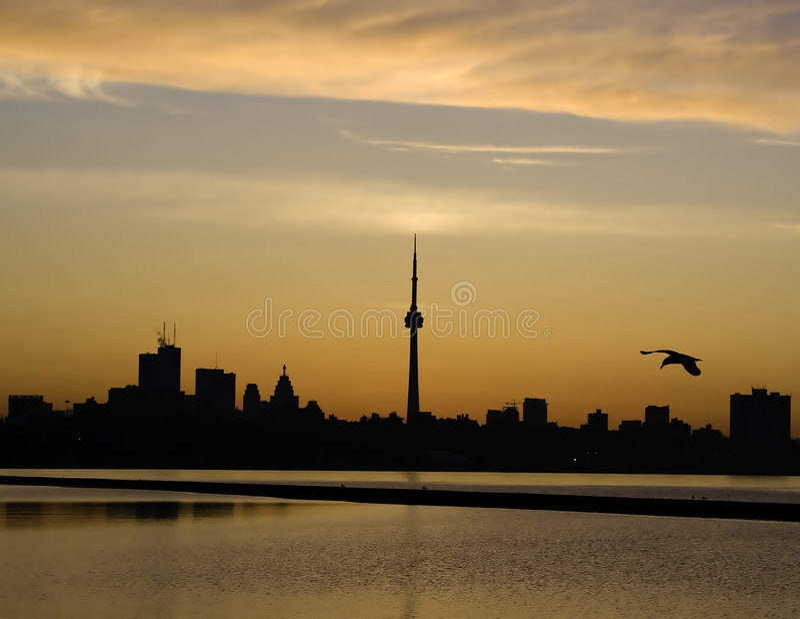 Download Toronto Sunrise stock photo. Image of city, toronto, ontario - 2313294