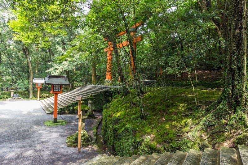 Toros vermelhos no santuário dos EUA Jingu, Oita, Japão fotografia de stock royalty free