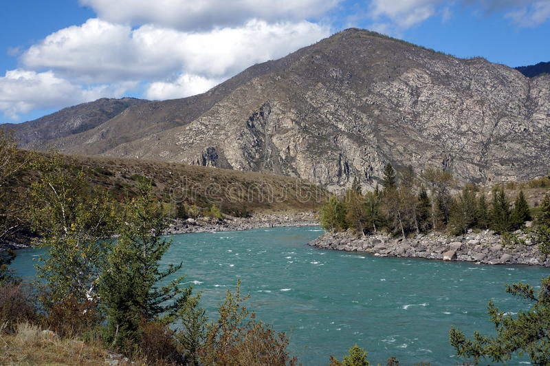 Torquoise flod royaltyfri bild