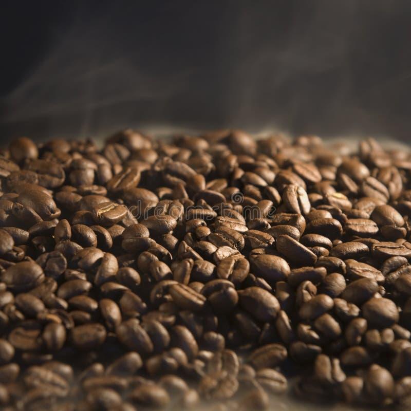 Torréfaction des grains de café photo stock